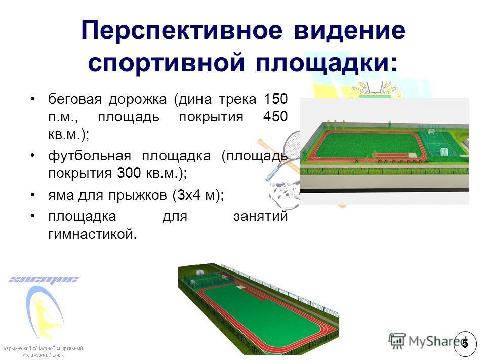 Перспективное видение спортивной площадки: беговая дорожка (дина трека 150 п.м., площадь покрытия 450 кв.м.); футбольная площадка (площадь покрытия 300 кв.м.); яма для прыжков (3х4 м); площадка для занятий гимнастикой. 5