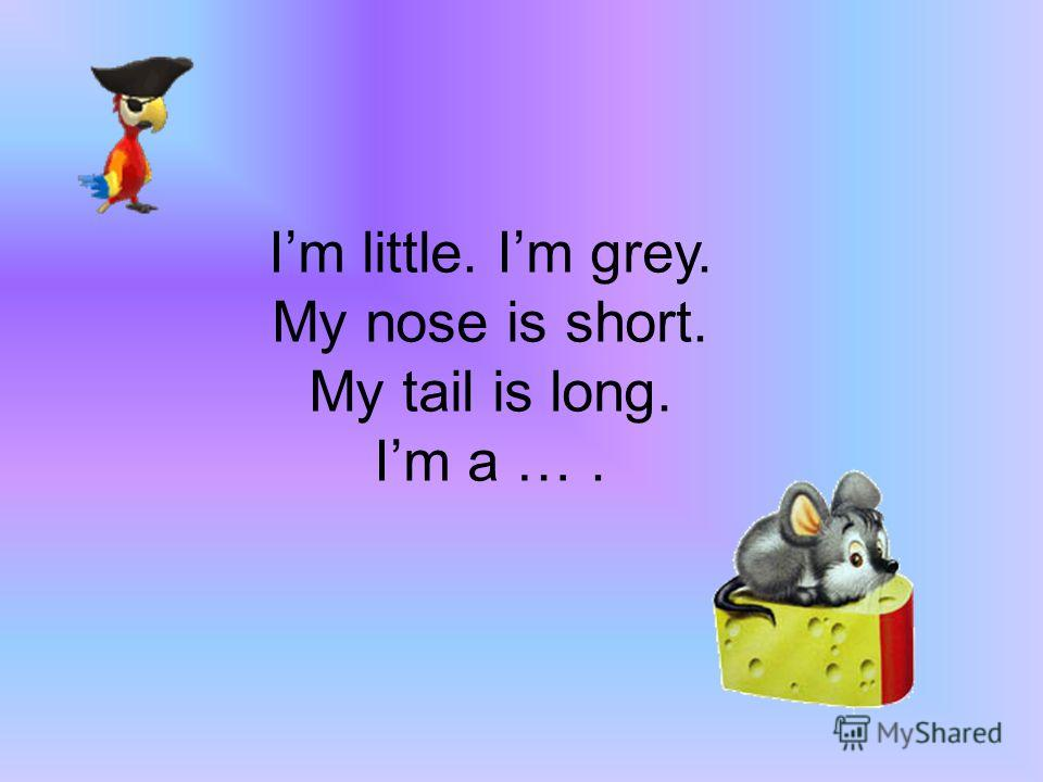 Im big. Im grey. My nose is long. My tail is short Im an ….
