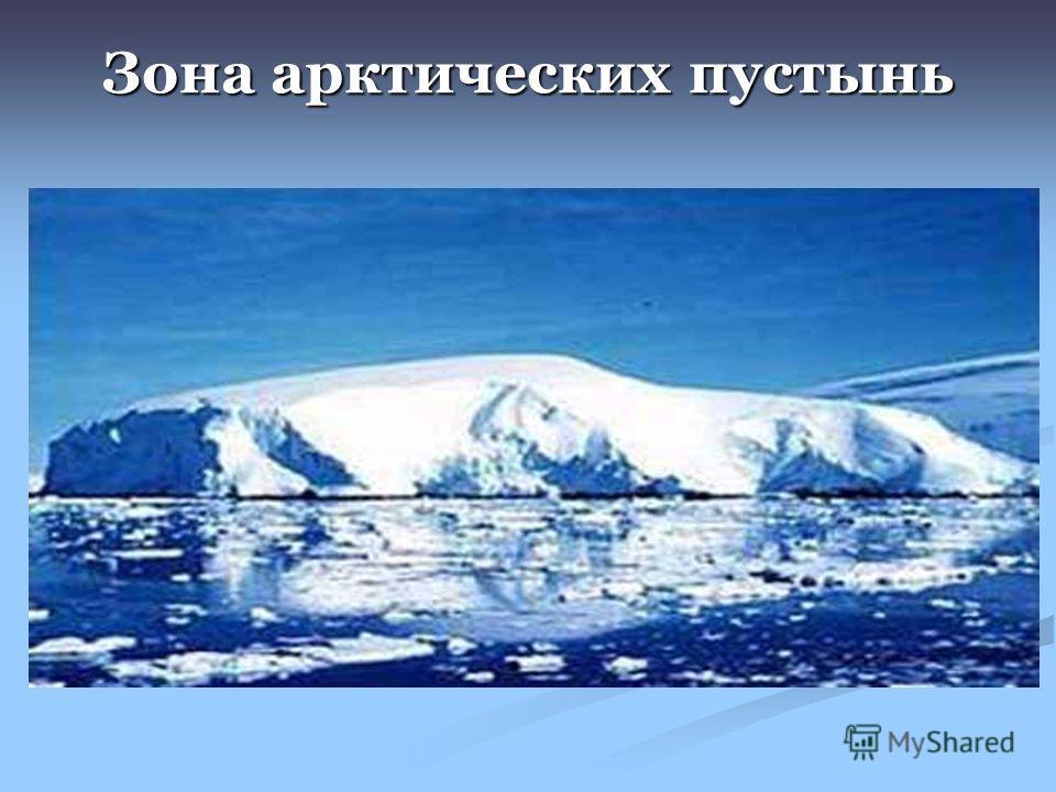 Животный и растительный мир россии