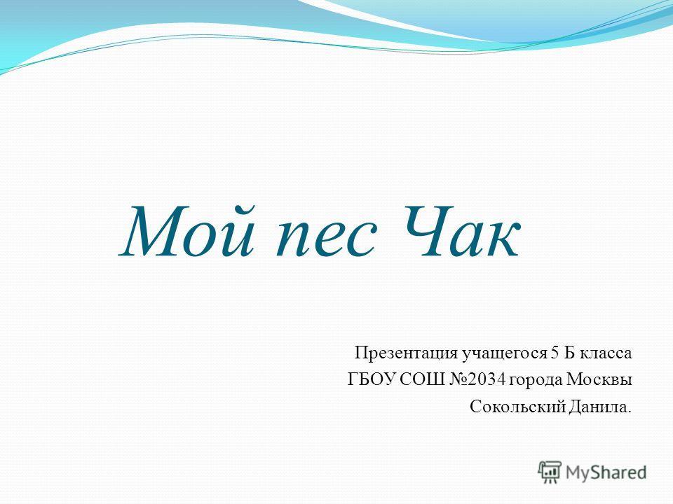 Мой пес Чак Презентация учащегося 5 Б класса ГБОУ СОШ 2034 города Москвы Сокольский Данила.