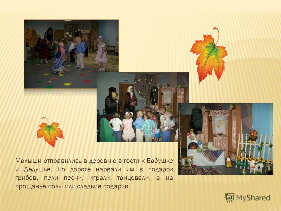 Малыши отправились в деревню в гости к Бабушке и Дедушке. По дороге нарвали им в подарок грибов, пели песни, играли, танцевали, а на прощанье получили сладкие подарки.