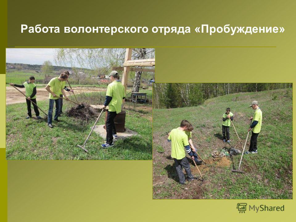 Работа волонтерского отряда «Пробуждение»