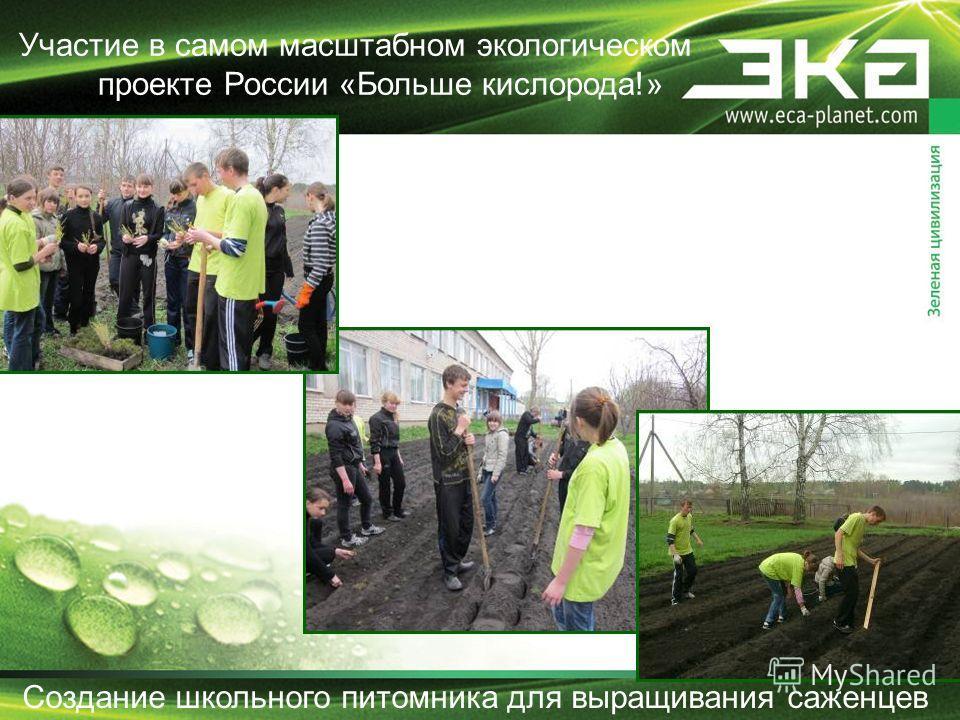 Создание школьного питомника для выращивания саженцев Участие в самом масштабном экологическом проекте России «Больше кислорода!»