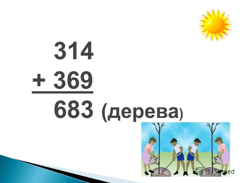 314 + 369 683 (дерева )