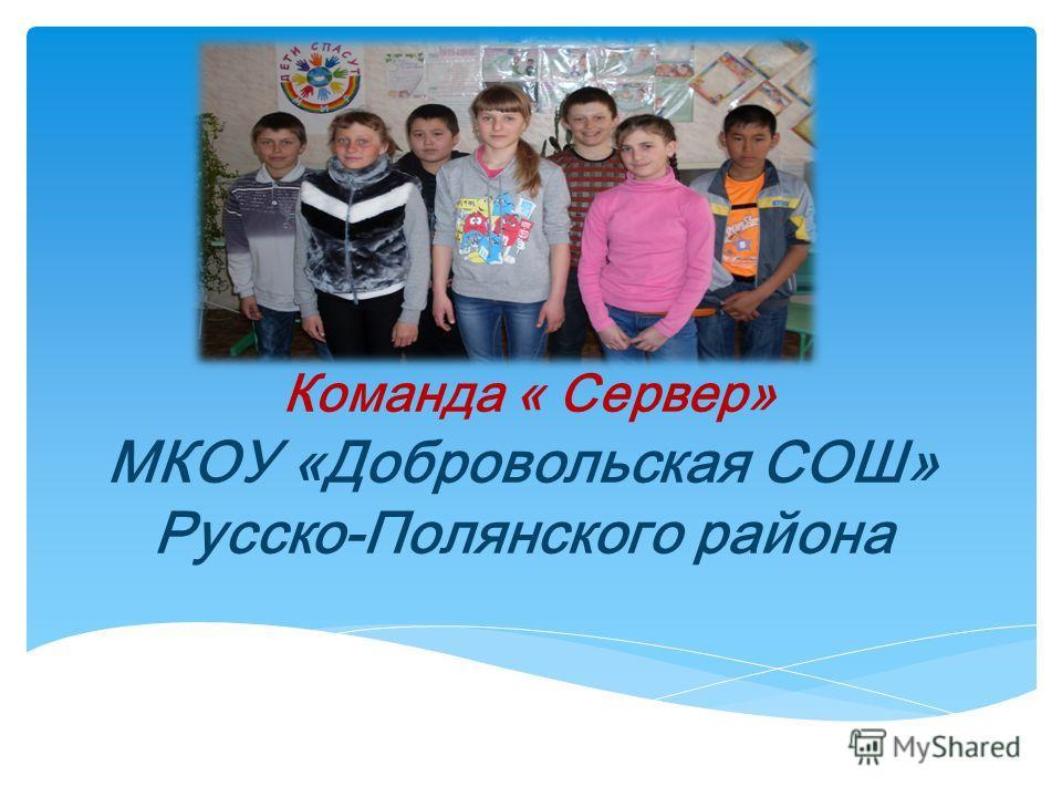 Команда « Сервер» МКОУ «Добровольская СОШ» Русско-Полянского района