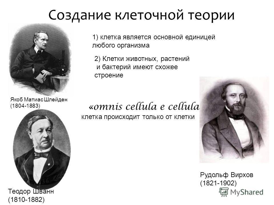 Создание клеточной теории Якоб Матиас Шлейден (1804-1883) Теодор Шванн (1810-1882) 1) клетка является основной единицей любого организма 2) Клетки животных, растений и бактерий имеют схожее строение «omnis cellula e cellula» клетка происходит только