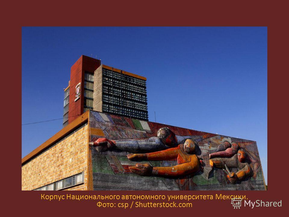 Корпус Национального автономного университета Мексики. Фото: csp / Shutterstock.com