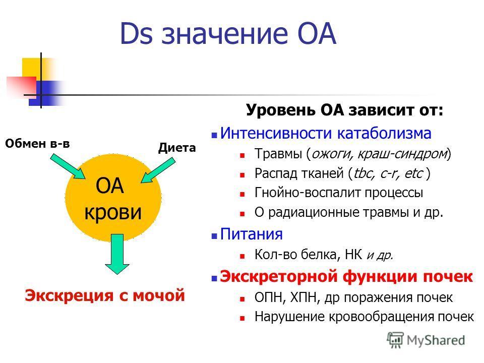 Ds значение ОА Уровень ОА зависит от: Интенсивности катаболизма Травмы (ожоги, краш-синдром) Распад тканей (tbc, c-r, etc ) Гнойно-воспалит процессы О радиационные травмы и др. Питания Кол-во белка, НК и др. Экскреторной функции почек ОПН, ХПН, др по