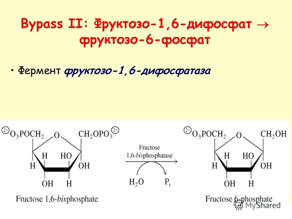 Фермент фруктозо-1,6-дифосфатаза Bypass II: Фруктозо-1,6-дифосфат фруктозо-6-фосфат