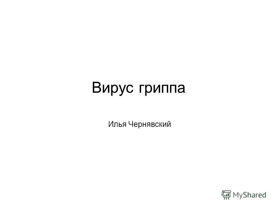 Вирус гриппа Илья Чернявский