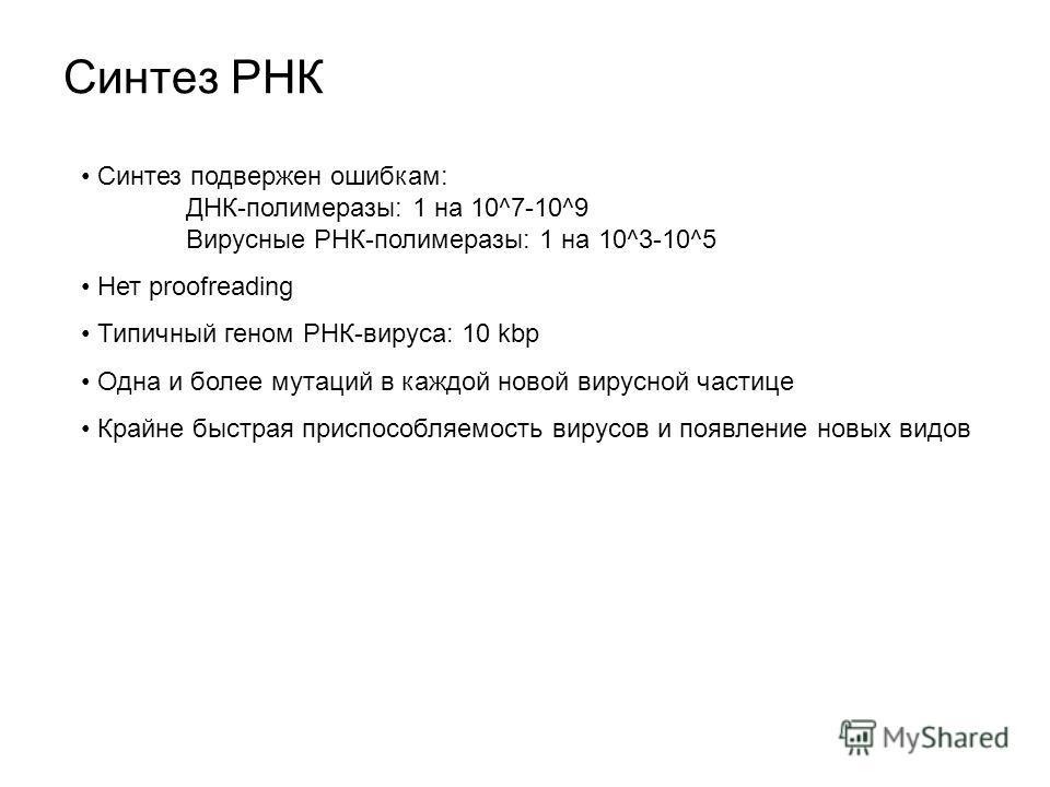 Синтез РНК Синтез подвержен ошибкам: ДНК-полимеразы: 1 на 10^7-10^9 Вирусные РНК-полимеразы: 1 на 10^3-10^5 Нет proofreading Типичный геном РНК-вируса: 10 kbp Одна и более мутаций в каждой новой вирусной частице Крайне быстрая приспособляемость вирус