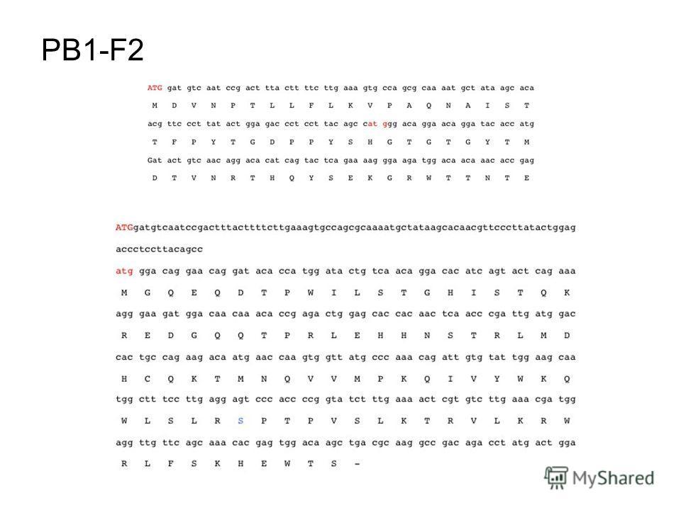 PB1-F2