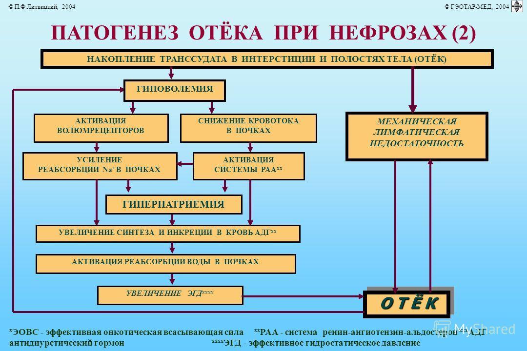 ПАТОГЕНЕЗ ОТЁКА ПРИ НЕФРОЗАХ (2) НАКОПЛЕНИЕ ТРАНССУДАТА В ИНТЕРСТИЦИИ И ПОЛОСТЯХ ТЕЛА (ОТЁК) О Т Ё К МЕХАНИЧЕСКАЯ ЛИМФАТИЧЕСКАЯ НЕДОСТАТОЧНОСТЬ АКТИВАЦИЯ ВОЛЮМРЕЦЕПТОРОВ СНИЖЕНИЕ КРОВОТОКА В ПОЧКАХ УСИЛЕНИЕ РЕАБСОРБЦИИ Na + В ПОЧКАХ АКТИВАЦИЯ СИСТЕМЫ