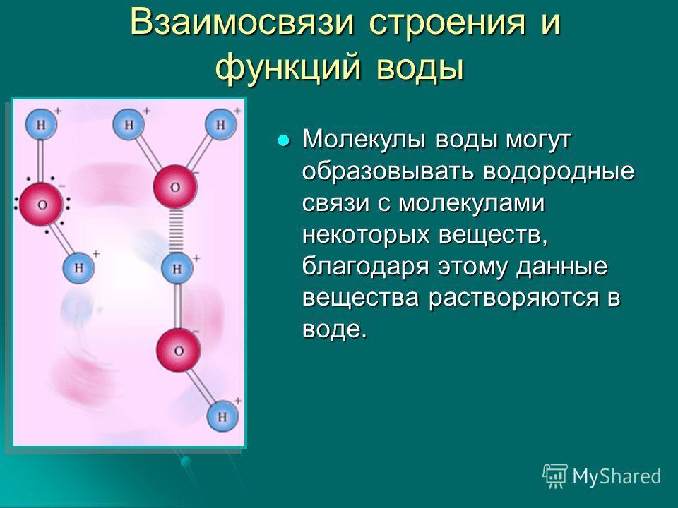 Молекулы воды могут образовывать водородные связи с молекулами некоторых веществ, благодаря этому данные вещества растворяются в воде.