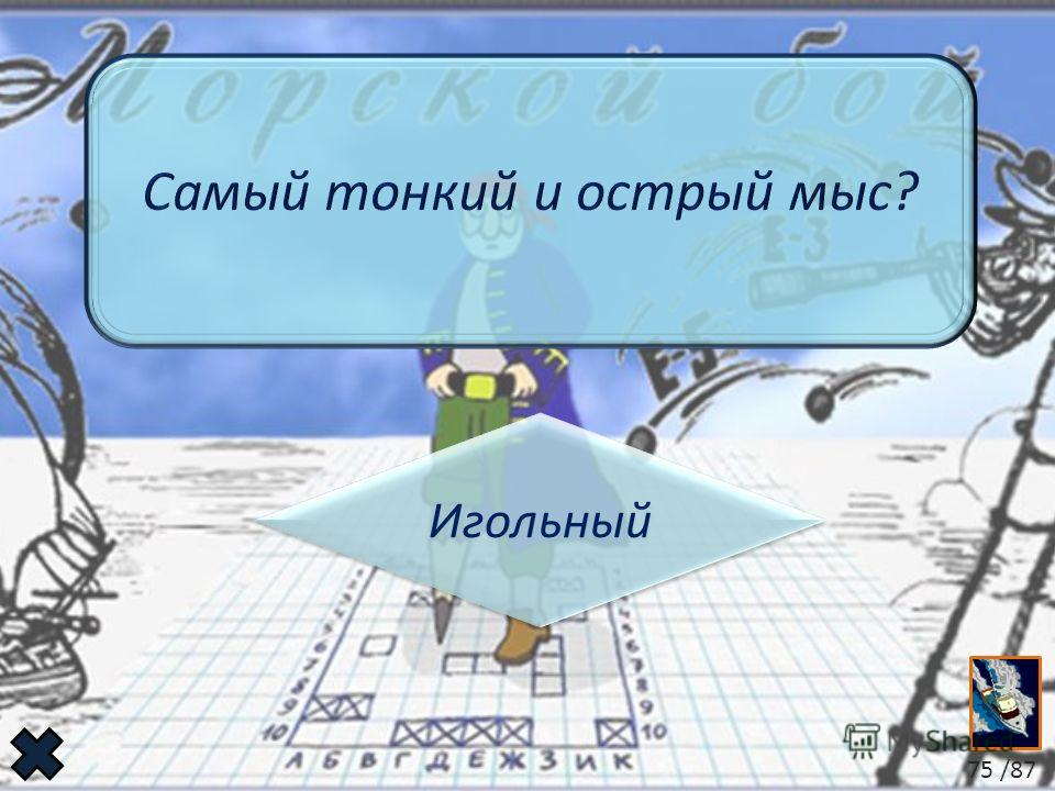 Игольный 75 /87