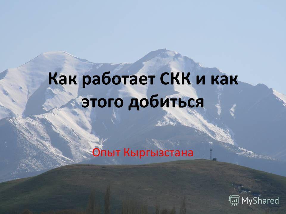 Как работает СКК и как этого добиться Опыт Кыргызстана
