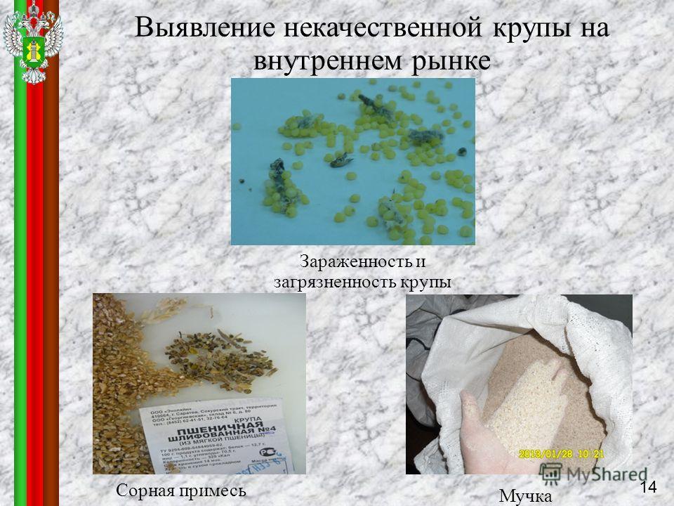 Зараженность и загрязненность крупы Выявление некачественной крупы на внутреннем рынке Сорная примесь Мучка 14