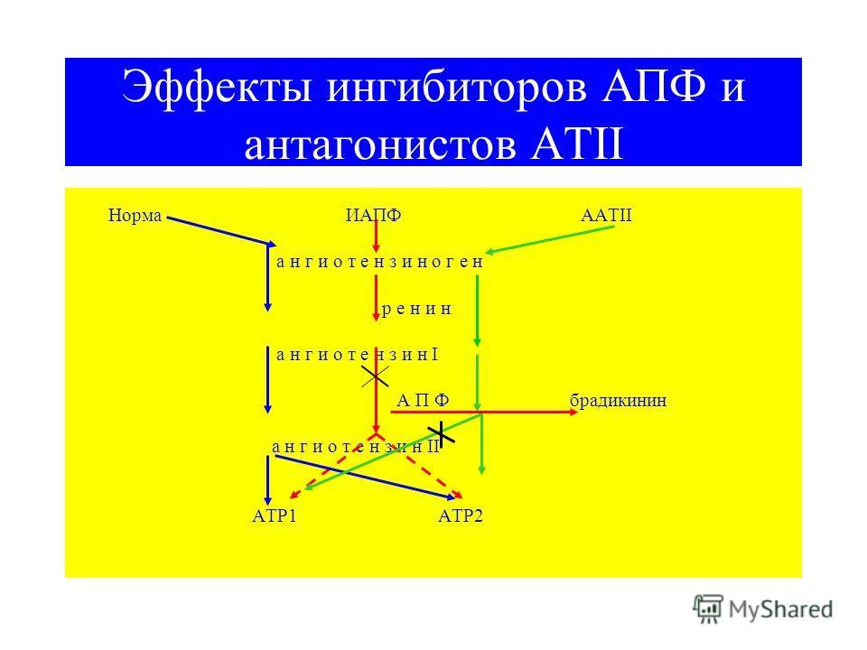 Эффекты ингибиторов АПФ и антагонистов АТII Норма ИАПФ ААТII а н г и о т е н з и н о г е н р е н и н а н г и о т е н з и н I А П Ф брадикинин а н г и о т е н з и н II АТР1 АТР2