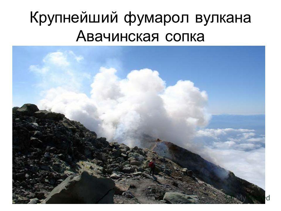 Крупнейший фумарол вулкана Авачинская сопка