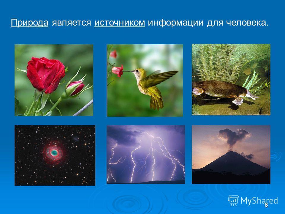 6 Природа является источником информации для человека.