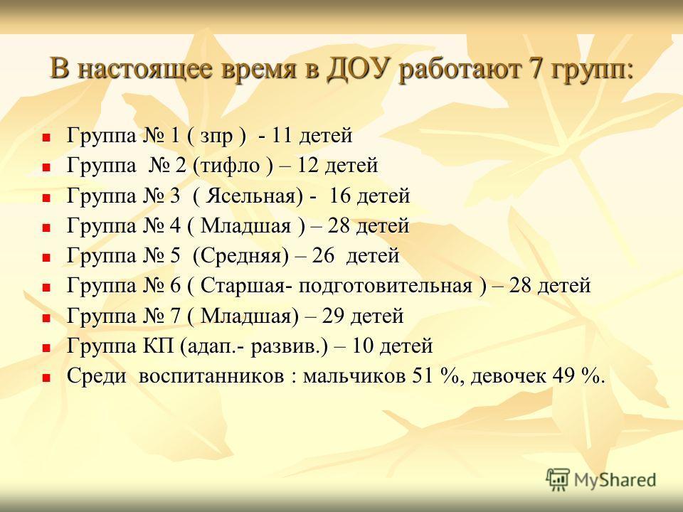 В настоящее время в ДОУ работают 7 групп: Группа 1 ( зпр ) - 11 детей Группа 1 ( зпр ) - 11 детей Группа 2 (тифло ) – 12 детей Группа 2 (тифло ) – 12 детей Группа 3 ( Ясельная) - 16 детей Группа 3 ( Ясельная) - 16 детей Группа 4 ( Младшая ) – 28 дете