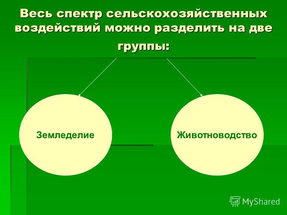 Весь спектр сельскохозяйственных воздействий можно разделить на две группы: ЗемледелиеЖивотноводство