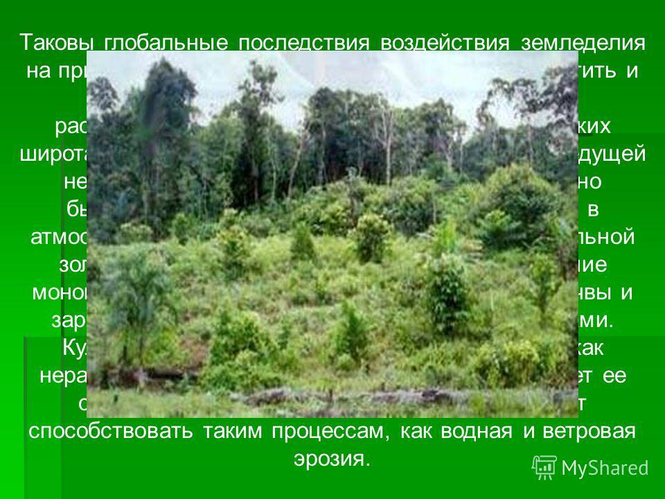 Таковы глобальные последствия воздействия земледелия на природные комплексы. Среди них следует отметить и нагрузки, которые испытывает экология от распространенной преимущественно в тропических широтах подсечно-огневой системы земледелия, ведущей не