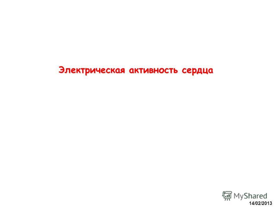 Электрическая активность сердца 14/02/2013