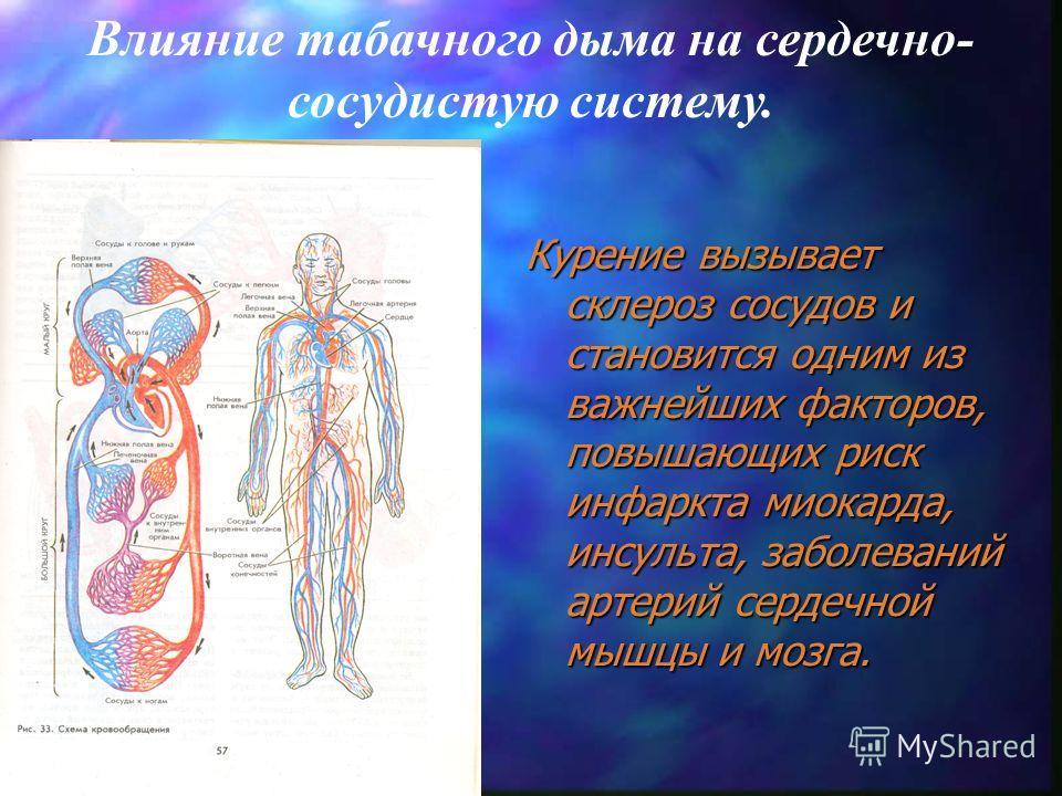 Двигательная зона Чувствительная зона Зрительный бугор Влияние табачного дыма на головной мозг