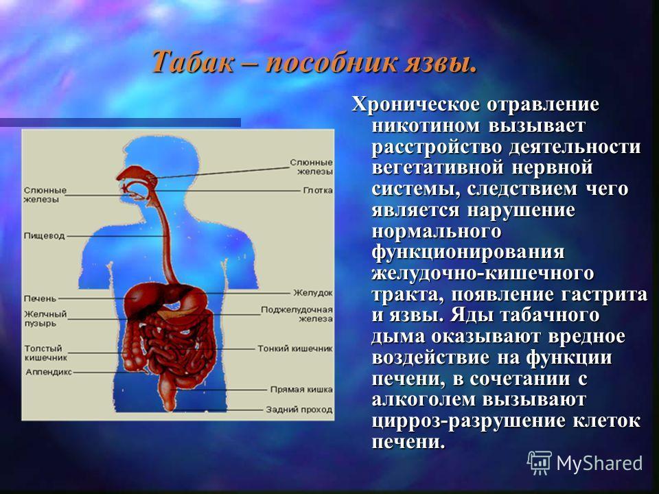 Курение вызывает склероз сосудов и становится одним из важнейших факторов, повышающих риск инфаркта миокарда, инсульта, заболеваний артерий сердечной мышцы и мозга. Влияние табачного дыма на сердечно- сосудистую систему.