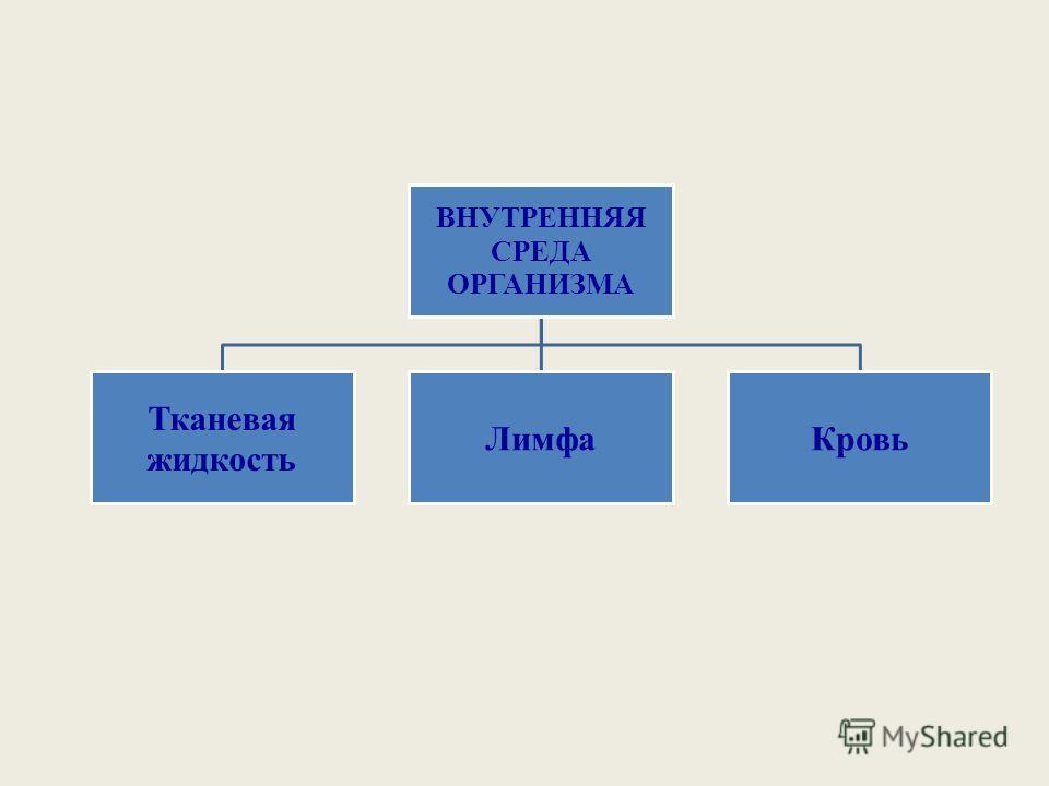ВНУТРЕННЯЯ СРЕДА ОРГАНИЗМА Тканевая жидкость ЛимфаКровь