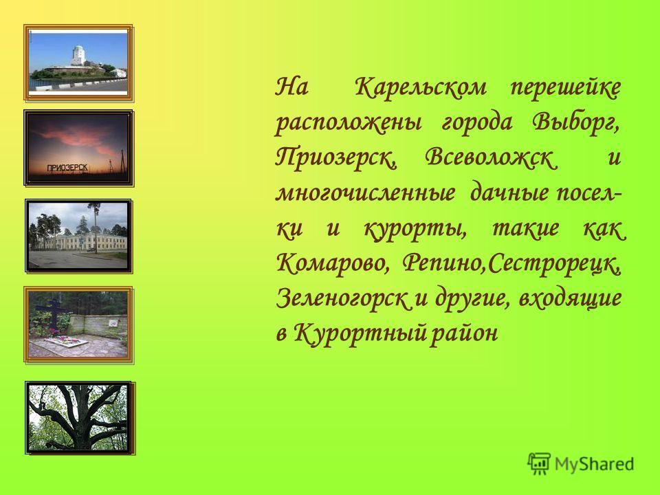На Карельском перешейке расположены города Выборг, Приозерск, Всеволожск и многочисленные дачные посел- ки и курорты, такие как Комарово, Репино,Сестрорецк, Зеленогорск и другие, входящие в Курортный район