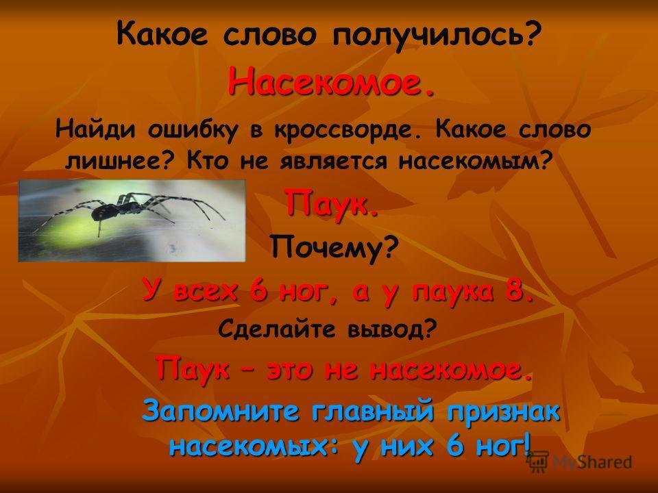 Какое слово получилось? Насекомое. Найди ошибку в кроссворде. Какое слово лишнее? Кто не является насекомым? П аук. Почему? У всех 6 ног, а у паука 8. Сделайте вывод? Паук – это не насекомое. Запомните главный признак насекомых: у них 6 ног!