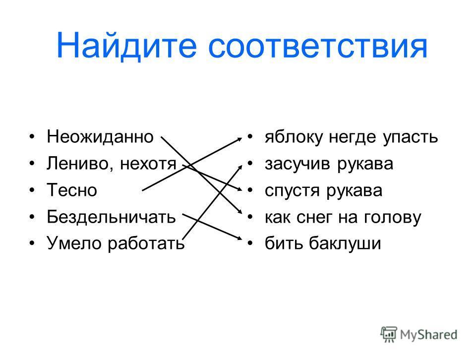 Ходячая энциклопедия