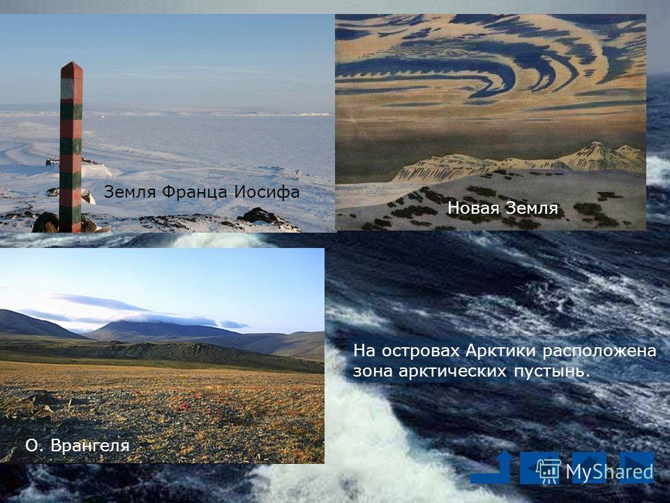 На островах Арктики расположена зона арктических пустынь. Арктика – это пространство Ледовитого океана вместе с морями и островами Земля Франца Иосифа Новая Земля О. Врангеля