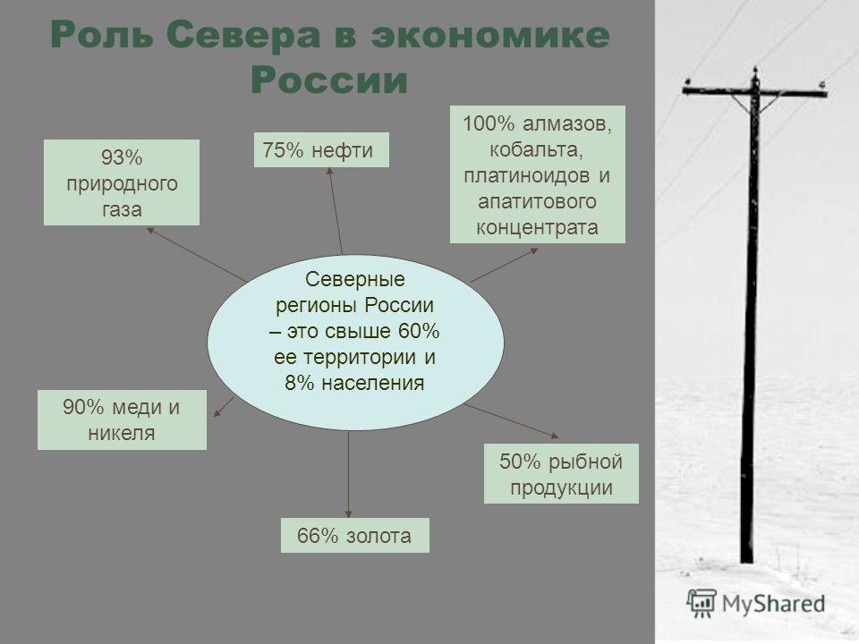 Роль Севера в экономике России Северные регионы России – это свыше 60% ее территории и 8% населения 93% природного газа 75% нефти 100% алмазов, кобальта, платиноидов и апатитового концентрата 90% меди и никеля 66% золота 50% рыбной продукции
