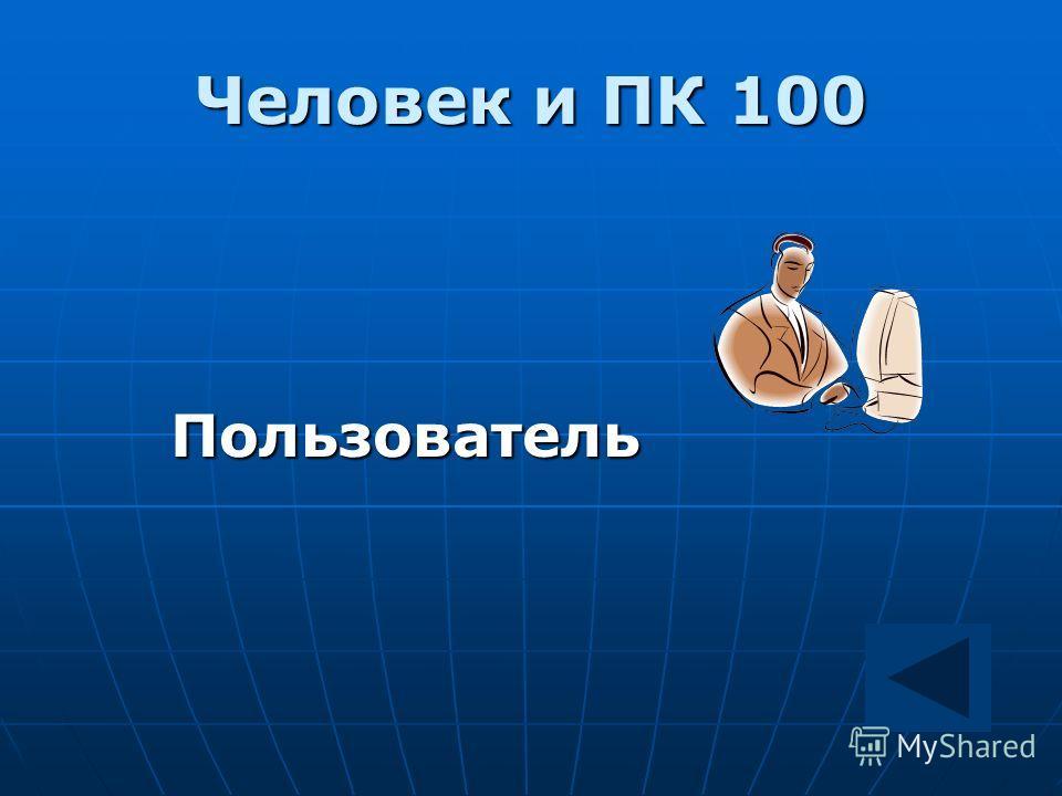 Человек и ПК 100 Пользователь