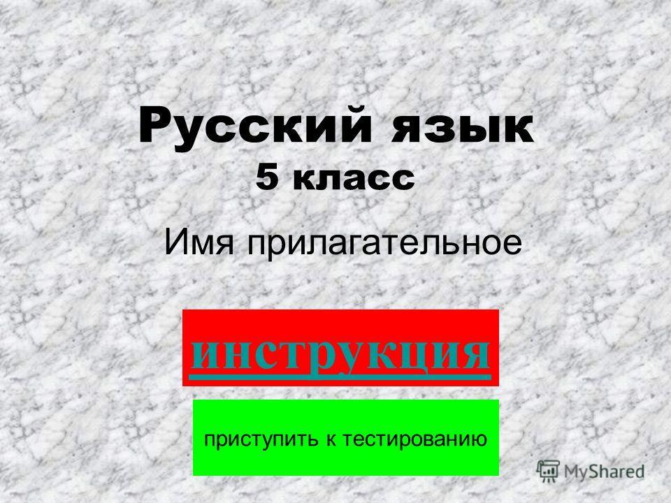 Русский язык 5 класс Имя прилагательное приступить к тестированию инструкция