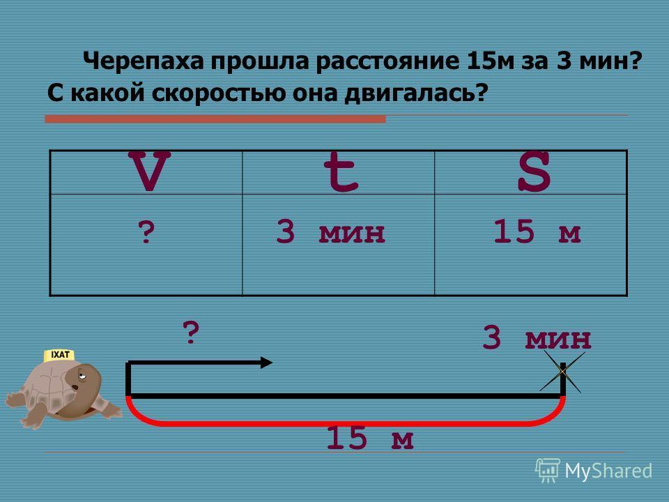 Черепаха прошла расстояние 15м за 3 мин? С какой скоростью она двигалась? SVt ?3 мин15 м ? 3 мин 15 м