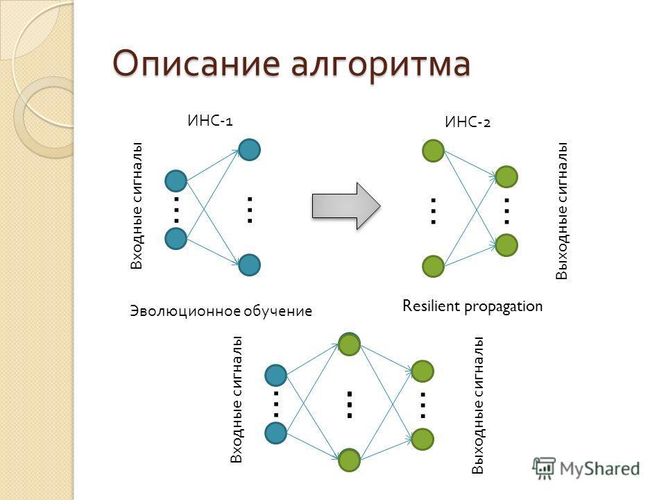 Описание алгоритма …… ИНС-1 …… ИНС-2 Эволюционное обучение Resilient propagation …… …… Входные сигналы Выходные сигналы Входные сигналы Выходные сигналы