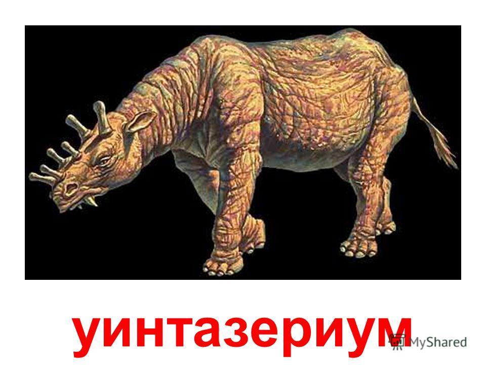 Тираннозавр (Королевский ящер-тиран) Тираннозавр - один из самых больших и кровожадных хищников среди динозавров. Он достигал в длину 15 метров и весил до 7 тонн! Поднимаясь на задних лапах во весь рост, тираннозавр издавал оглушительный рев, приводя