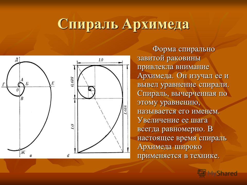 Спираль Архимеда Форма спирально завитой раковины привлекла внимание Архимеда. Он изучал ее и вывел уравнение спирали. Спираль, вычерченная по этому уравнению, называется его именем. Увеличение ее шага всегда равномерно. В настоящее время спираль Арх