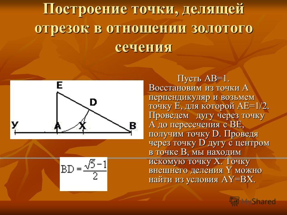 Построение точки, делящей отрезок в отношении золотого сечения Пусть AB=1. Восстановим из точки A перпендикуляр и возьмем точку Е, для которой АЕ=1/2. Проведем дугу через точку А до пересечения с ВЕ, получим точку D. Проведя через точку D дугу с цент