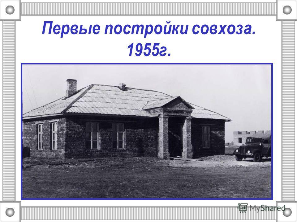 Первые постройки совхоза. 1955г.