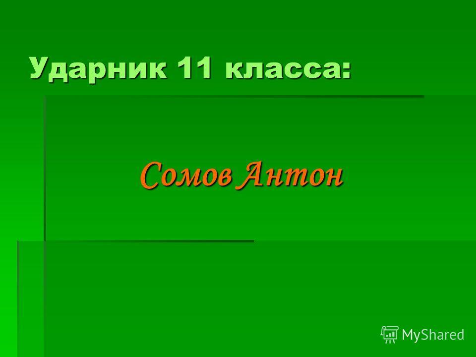 Ударник 11 класса: Сомов Антон