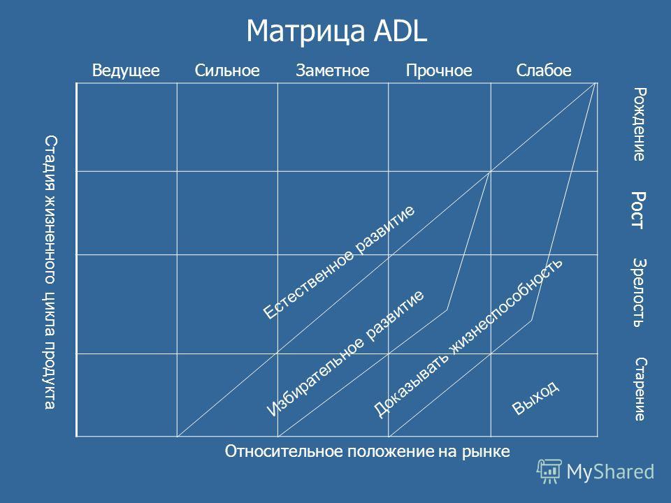 Матрица ADL ВедущееСильноеЗаметноеПрочноеСлабое Рождение Рост Зрелость Старение Относительное положение на рынке Стадия жизненного цикла продукта Выход Доказывать жизнеспособность Избирательное развитие Естественное развитие