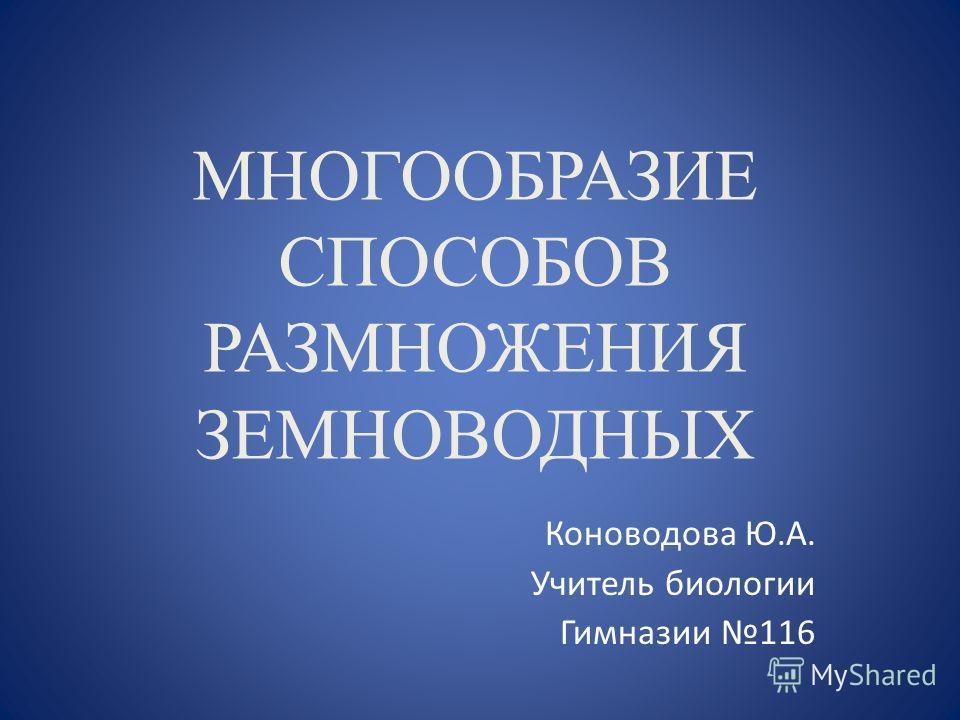 МНОГООБРАЗИЕ СПОСОБОВ РАЗМНОЖЕНИЯ ЗЕМНОВОДНЫХ Коноводова Ю.А. Учитель биологии Гимназии 116