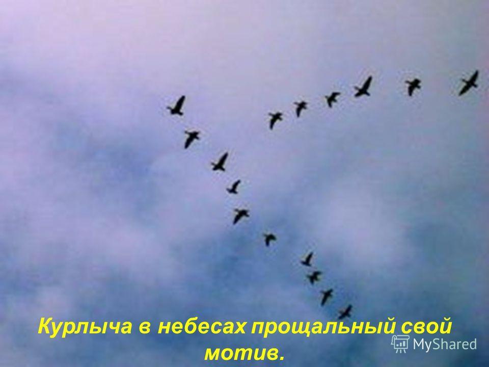 И клином журавли средь серых туч летят,