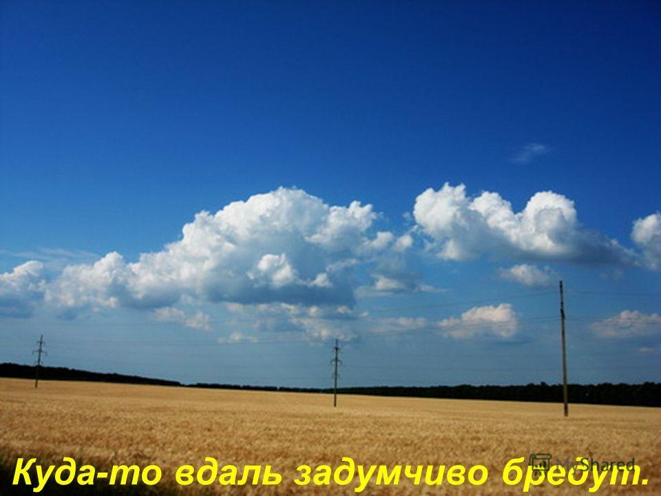 И облака на синем небе ясном