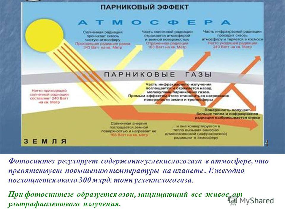 Рассмотрите схему взаимосвязи процессов фотосинтеза и дыхания